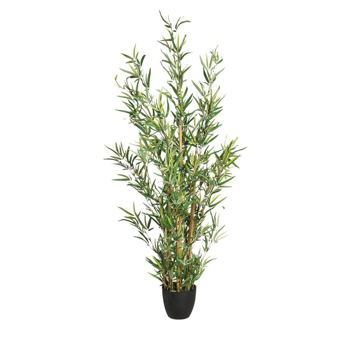 Arbuste en pots bambou 120 cm