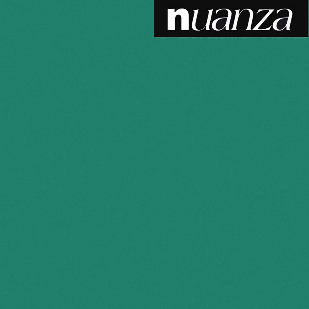 Peinture vert bouteille velours multi supports Nuanza