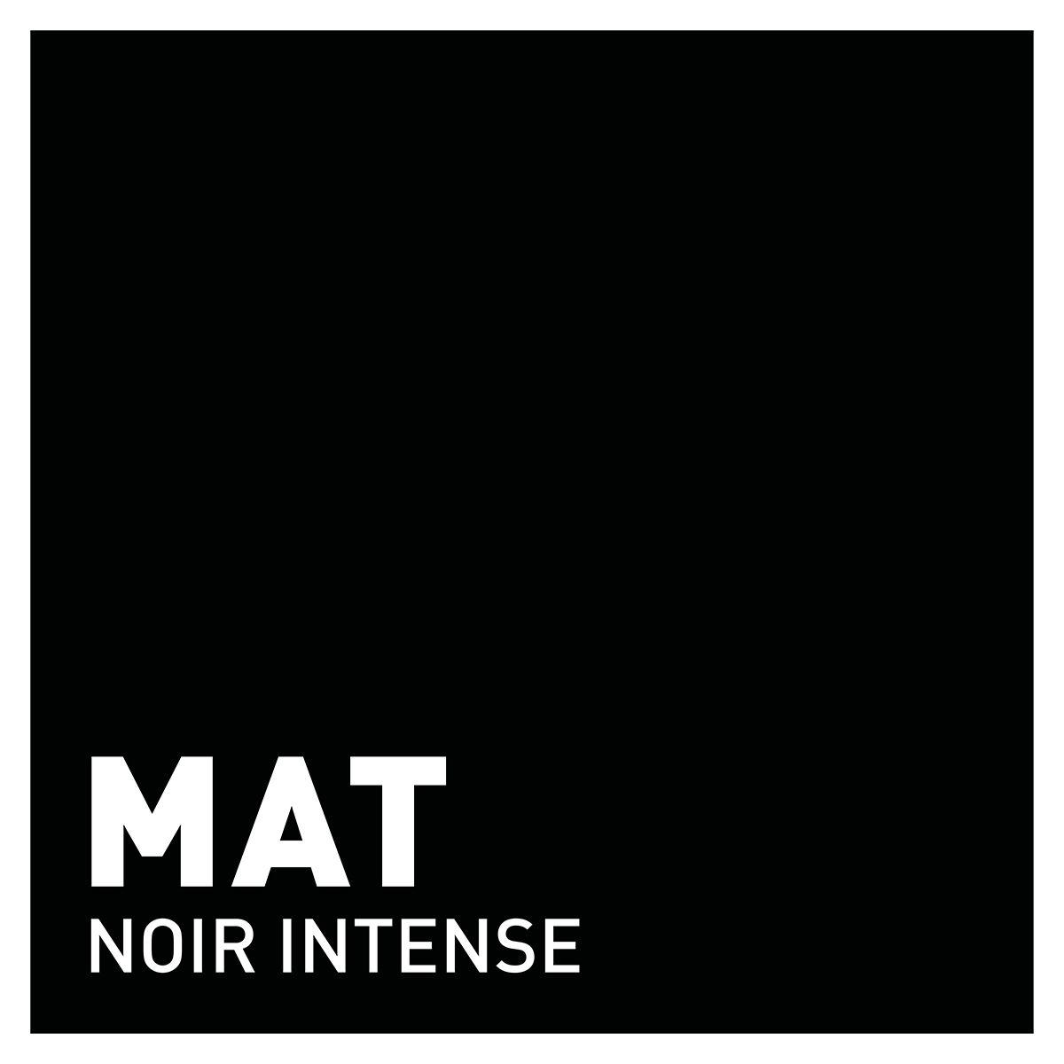 Peinture noir intense mat 20 minutes chrono Renaulac
