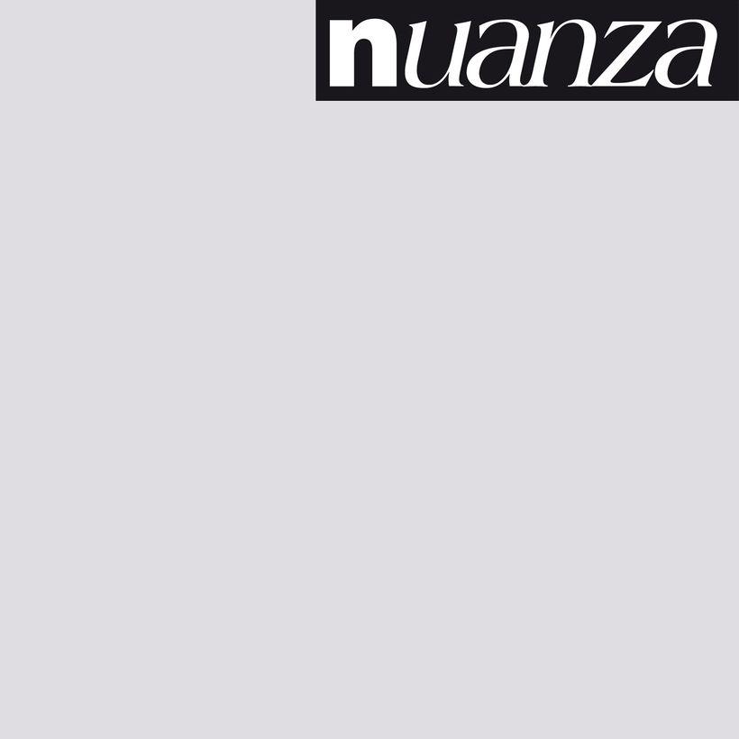 Peinture brume satin multisupports Nuanza 0.5l