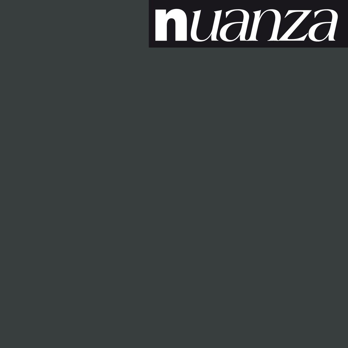 Peinture noir satin multisupports Nuanza 0.5l